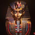 Exposición Momias, Testigos del Pasado